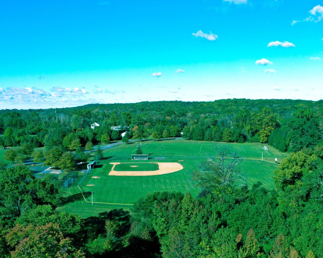 thumbnail_Aerial view of park with baseball and soccer fields (JPEG)